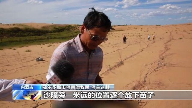 一家人治沙27年 6700亩沙漠披绿装