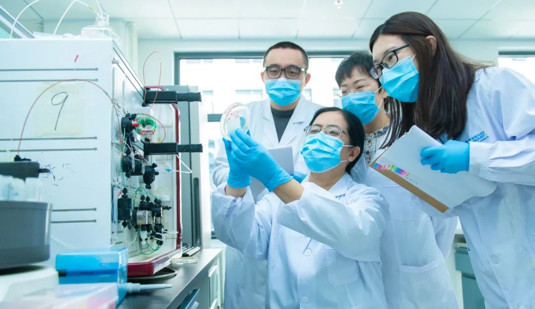 3月20日,中科院微生物研究所研究员严景华与团队学生们讨论实验结果。英国《自然》杂志5月在线发表报告介绍了中国研究团队找到的针对新冠病毒感染的治疗性单克隆抗体,严景华为这份报告通讯作者之一。(新华社发,王强摄)