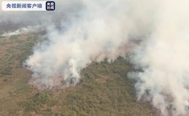 △巴西西部马托格罗索州7月21日燃起野外大火
