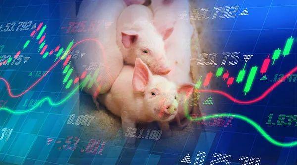 猪肉价格涨85%,万科跨界养猪正式启动,养猪赚钱还能持续多久?