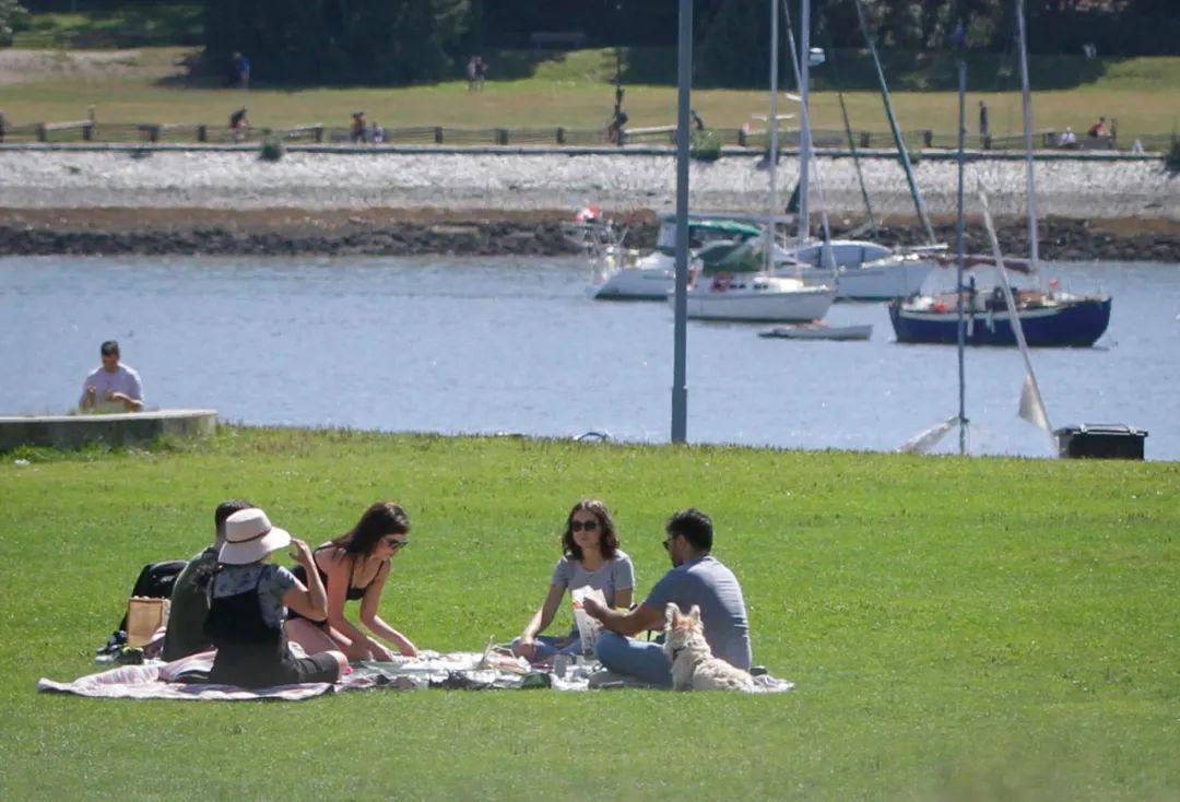8月8日,在加拿大温哥华,几名年轻人在公园野餐。新华社发(梁森摄)