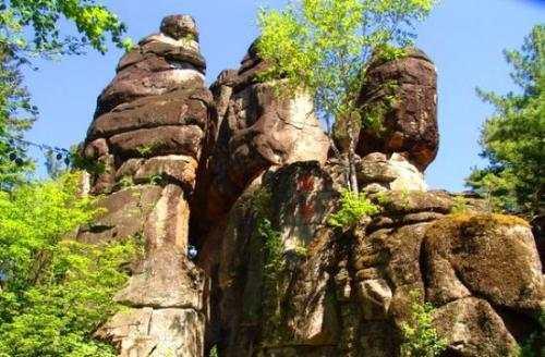 """警惕重金""""移石造景""""之风:有景观石一块逾百万元"""