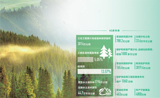 三北工程造林保存面积超3000万公顷 五期即将完成
