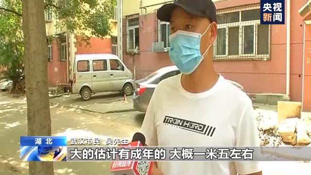 """""""神奇女侠2""""新发亚马逊奥运会剧照"""