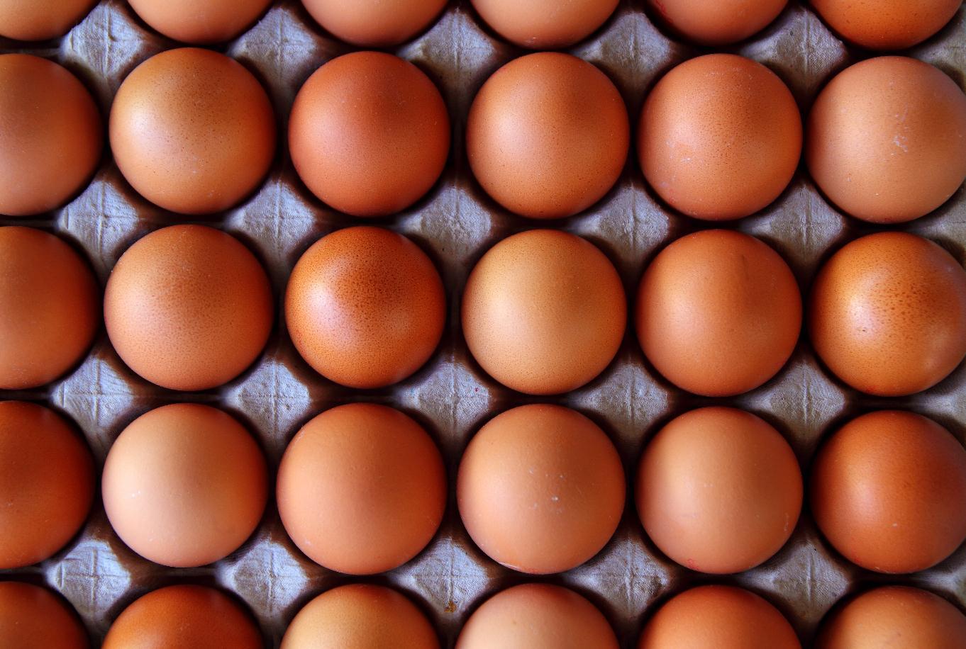 """鸡蛋价格上涨背后:收购量接近""""腰斩"""" 蛋商高价抢蛋进入白热化"""