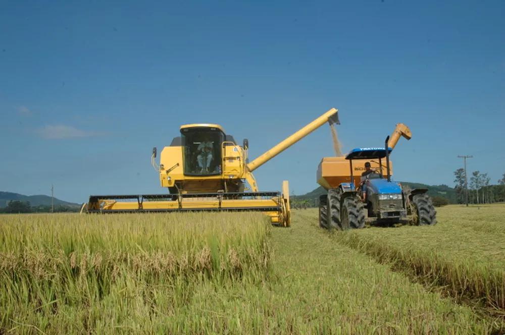(巴西南部圣卡塔琳娜州水稻收割作业 图片来源:巴西环球传媒集团)