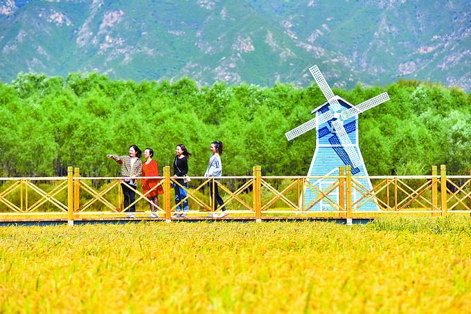 北京最新的天气预报:周末风小,秋天凉爽,适合旅游。