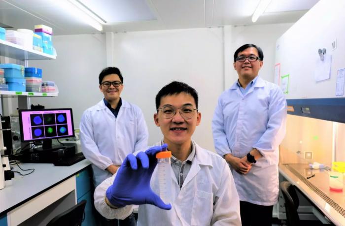 """科学家使用新方法将纳米颗粒转变为导致癌细胞自毁的""""特洛伊木马"""""""
