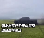 男子开车碾压草原处罚结果来了!官方:罚款还要把草种回去