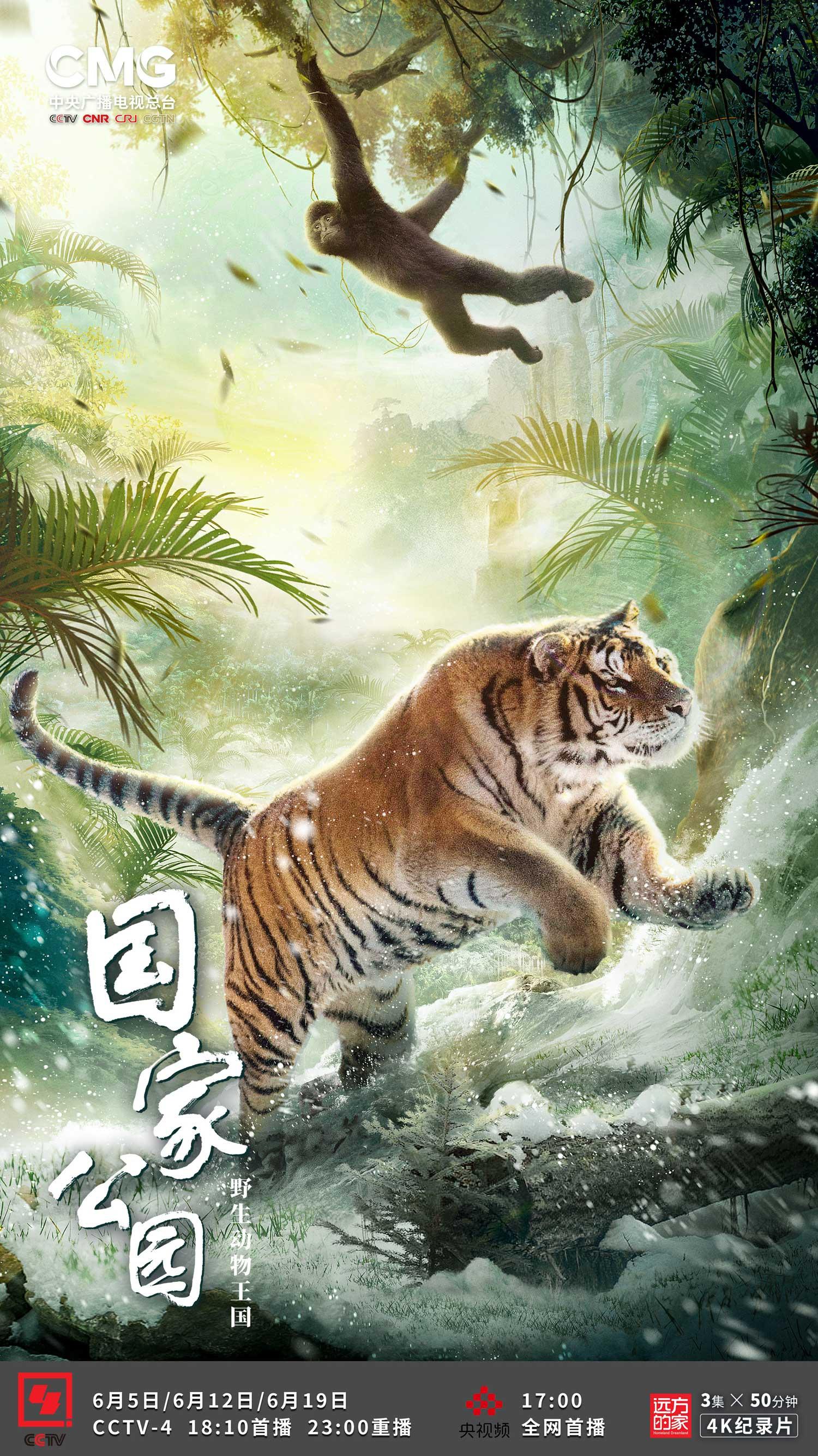 总台《国家公园:野生动物王国》纪录片带你走进《珍贵的家园》