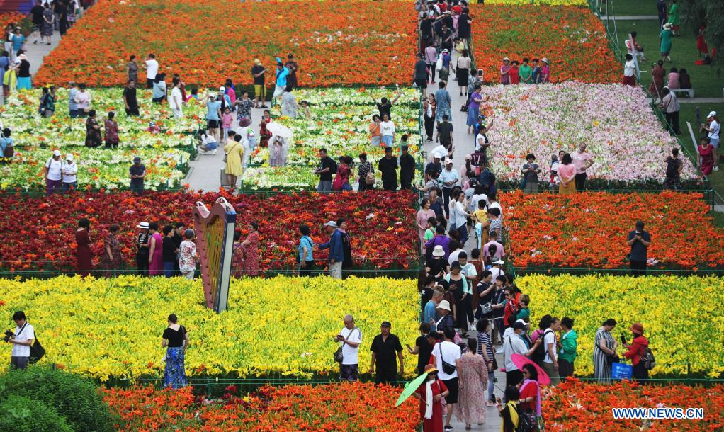 People enjoy themselves beside lilies at Shenshuiwan Park in Shenyang, northeast China's Liaoning Province, July 6, 2021. (Xinhua/Yang Qing)