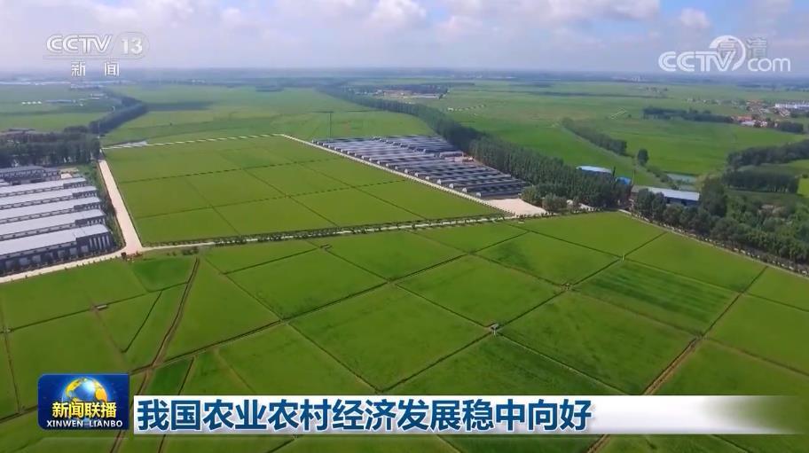 我国农业农村经济发展稳中向好