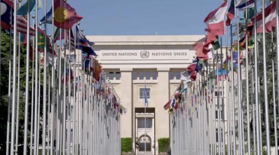 △联合国日内瓦办事处