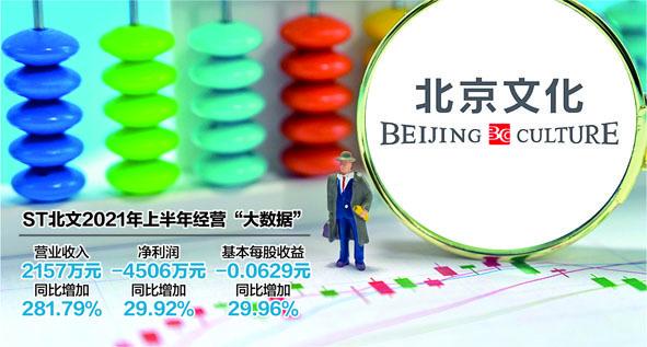 数据来源:公司半年报 视觉中国图杨靖制图
