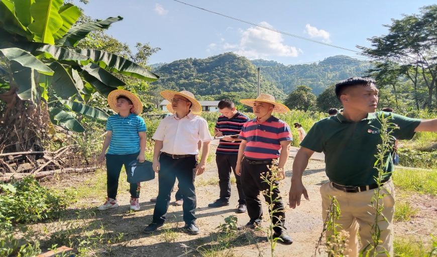 做规划、强产业、建园区……广州这支驻镇工作队对口帮扶工作项项落到实处