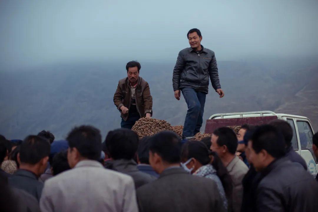 甘肃当地的中药草交易市场非常火热