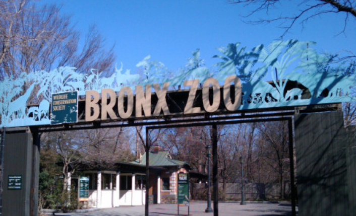 △美国纽约布朗克斯动物园