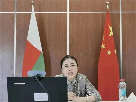 中国驻马达加斯加大使与马友华团体负责人举行视频会谈