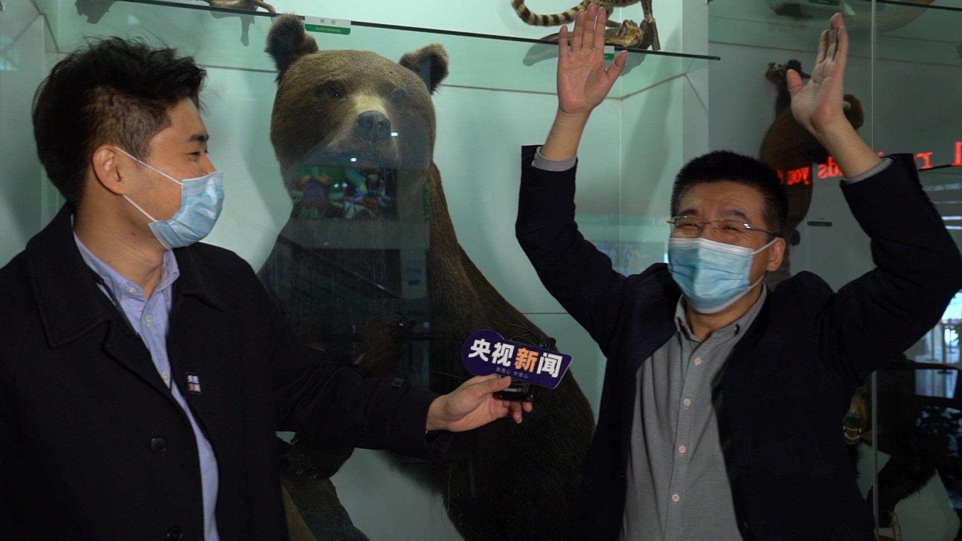 """△专家互动演示:如果熊近在咫尺,可以""""举手投降"""""""