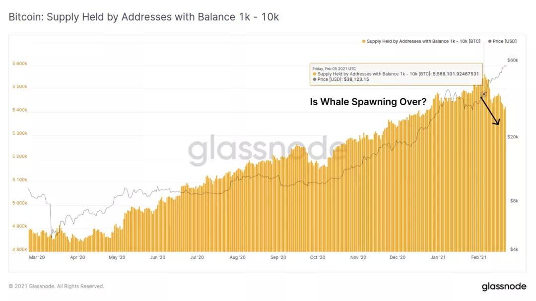 """比特币暴涨暴跌背后 """"巨鲸""""2月减持14万枚比特币"""