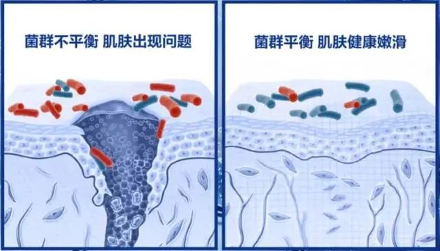 Radical vs conservative? Things you don't know about maintaining stability插图8