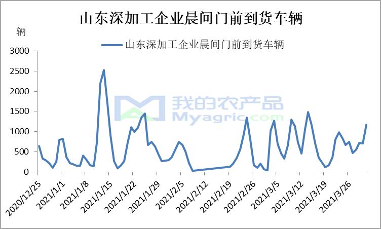 我的农产品:华北连续下行 市场氛围紧张