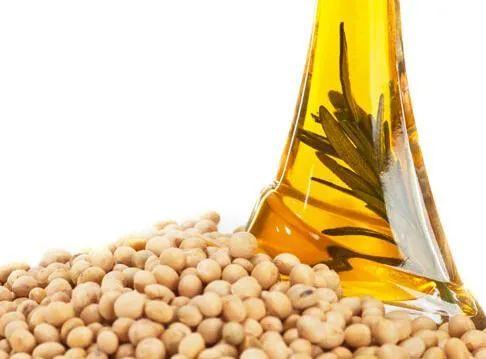 未来油粕市场将会如何演变?