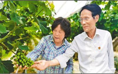 湖南省社科院原院长朱有志:驻村11年 带富一个村