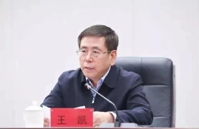 """王凯履新河南代省长 一年内长春市委书记、市长双双""""南下"""""""