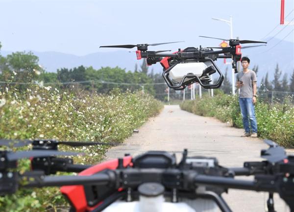 在广东台山汶村镇茭一村,工作人员启动农业无人机升空。新华社记者 邓华摄