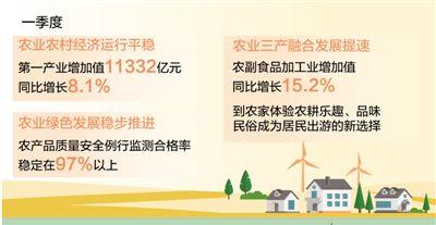 我国一季度第一产业增加值同比增8.1% 农业高质量发展态势良好