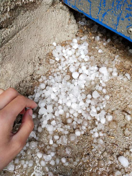 刚刚陕西山西多地遭大雨冰雹袭击 苹果等农作物损失惨重