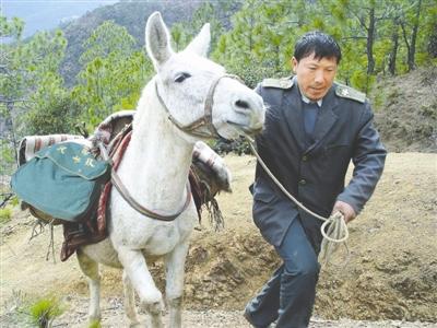 王顺友生前工作照