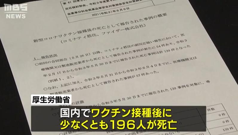 MBS电视台视频报道截图