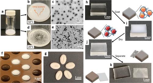 MIT科研人员设计出配制疏水性药物的新方法  可能带来更小的药丸