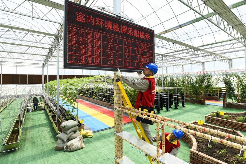 浙江嘉兴供电公司创新推出共同富裕电力指数