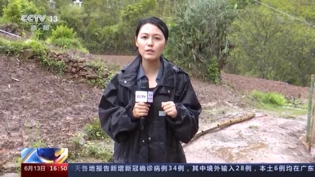 大象来了!云南南山村携手护象