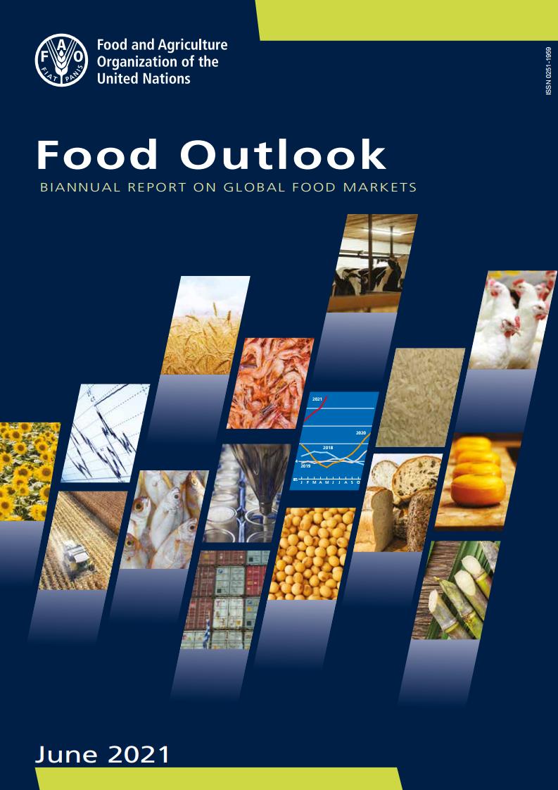 联合国粮食及农业组织:2020年全球粮食展望报告
