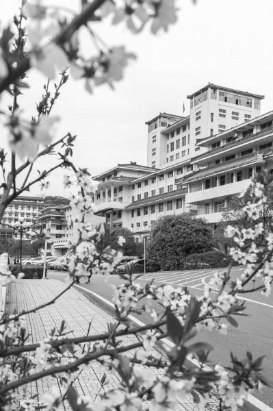 湖北民族大学:融入日常 抓在经常 推动党史学习教育见行见效