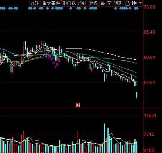 """格力1.2万员工""""5折""""认购公司股票 引发股价震动"""