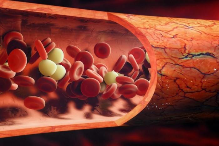 红血球中的抗衰老蛋白有助于预防智力衰退、记忆力差和听力缺陷的发生