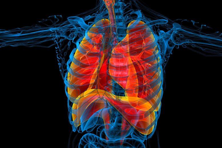罕见但有可能:已康复者中与COVID-19有关的MIS-A多系统炎症综合征