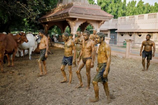 有印度民众将牛粪涂在身上,(他们)认为这将提高他们的免疫力,以抵御新冠病毒(图源:外媒)