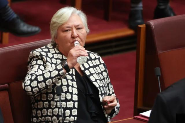 澳大利亚参议员在会议中酩酊大醉,同事:真怕她摔倒!