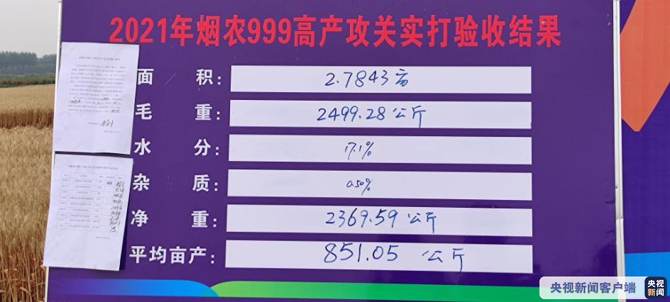 851.05公斤!安徽小麦亩产再破纪录