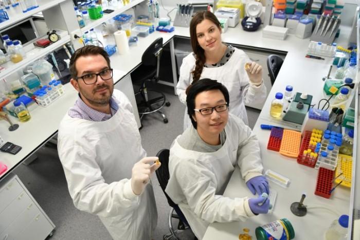 对抗超级细菌的新措施:摄入鱼油中的脂肪酸可减少抗生素耐药性