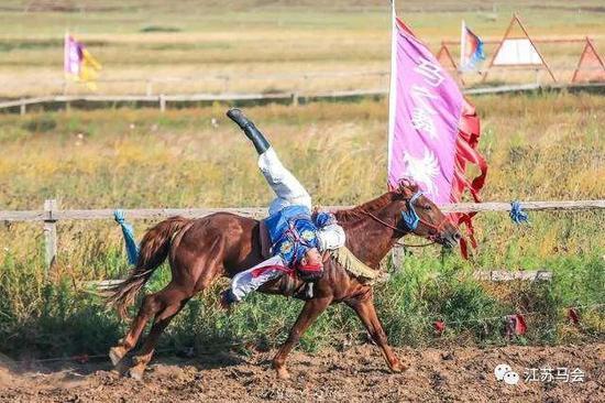 马背上提战高难度行为