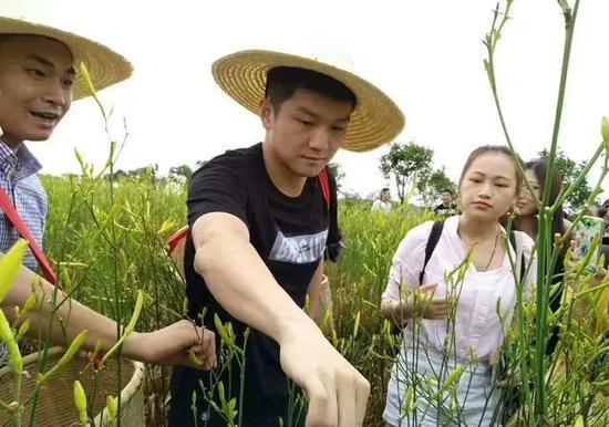 樊振东回到湖南参加黄花菜文化节