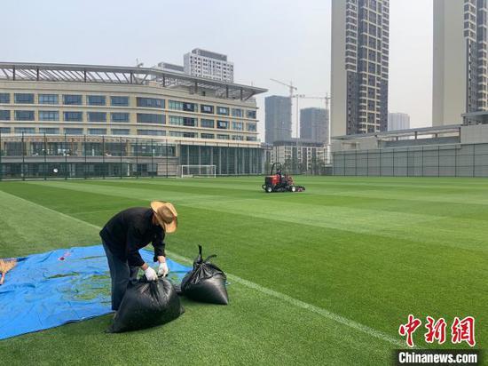 图为大连人足球青训基地里,做事人员对草坪进走息整。 邓涵竹 摄