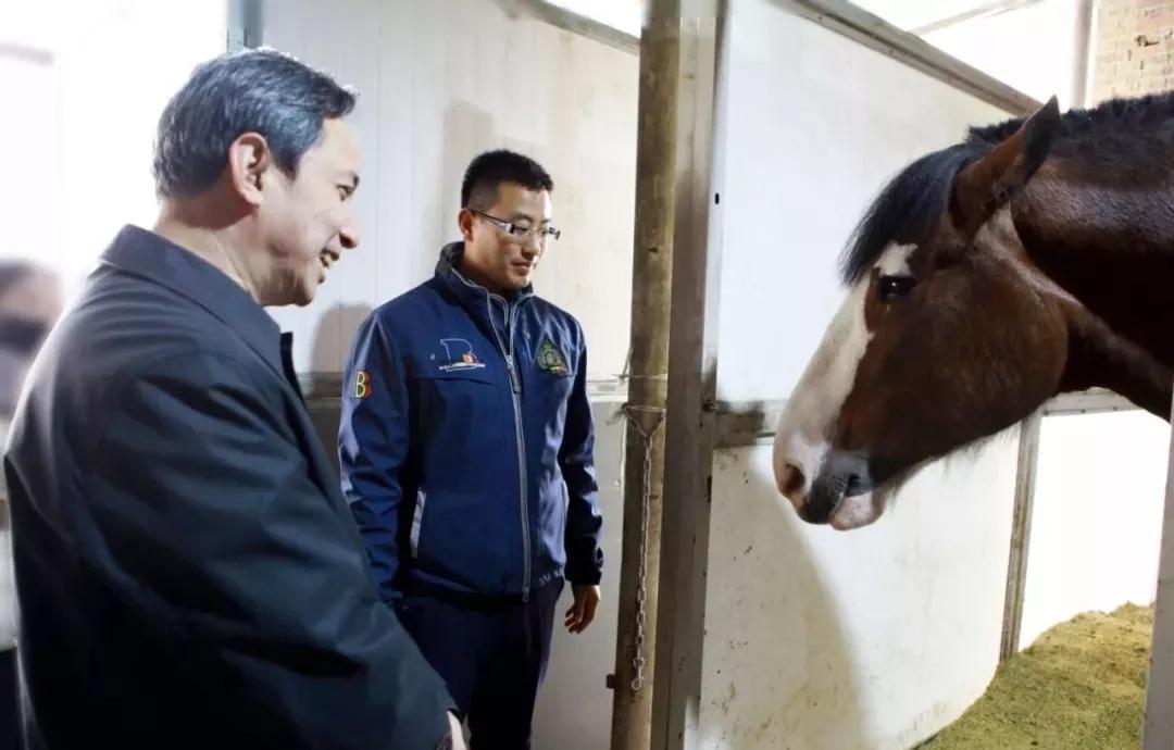 北京副市长调研